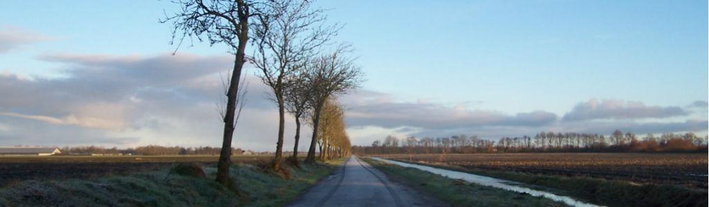 Landweg met bomen, een sloot en wolken. OKO helpt op weg.